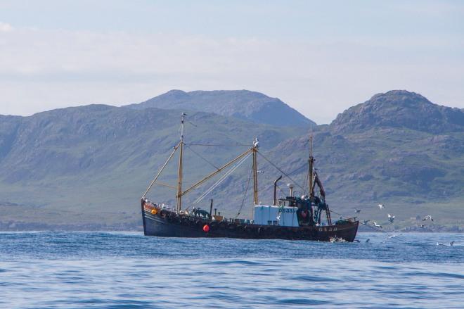 Tidig fiskare
